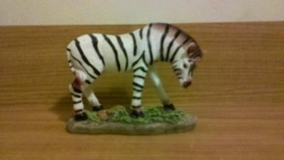 zebra_mule
